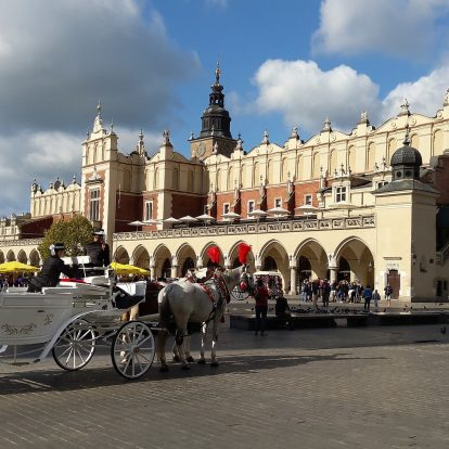 Segway Krakow - 8